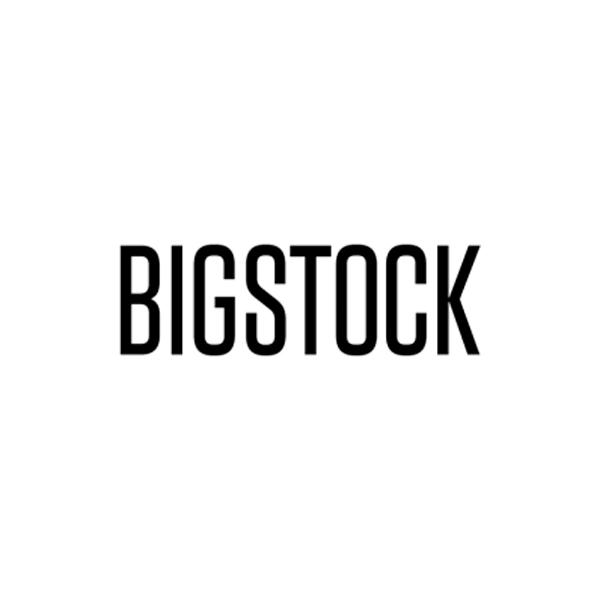 bigstock600